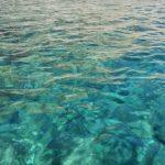 Diving ponza